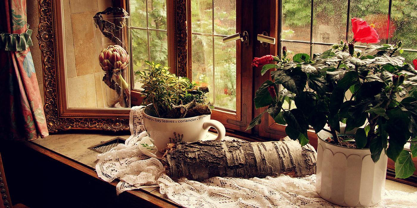 Dekorierte Fensterbank in der Diele